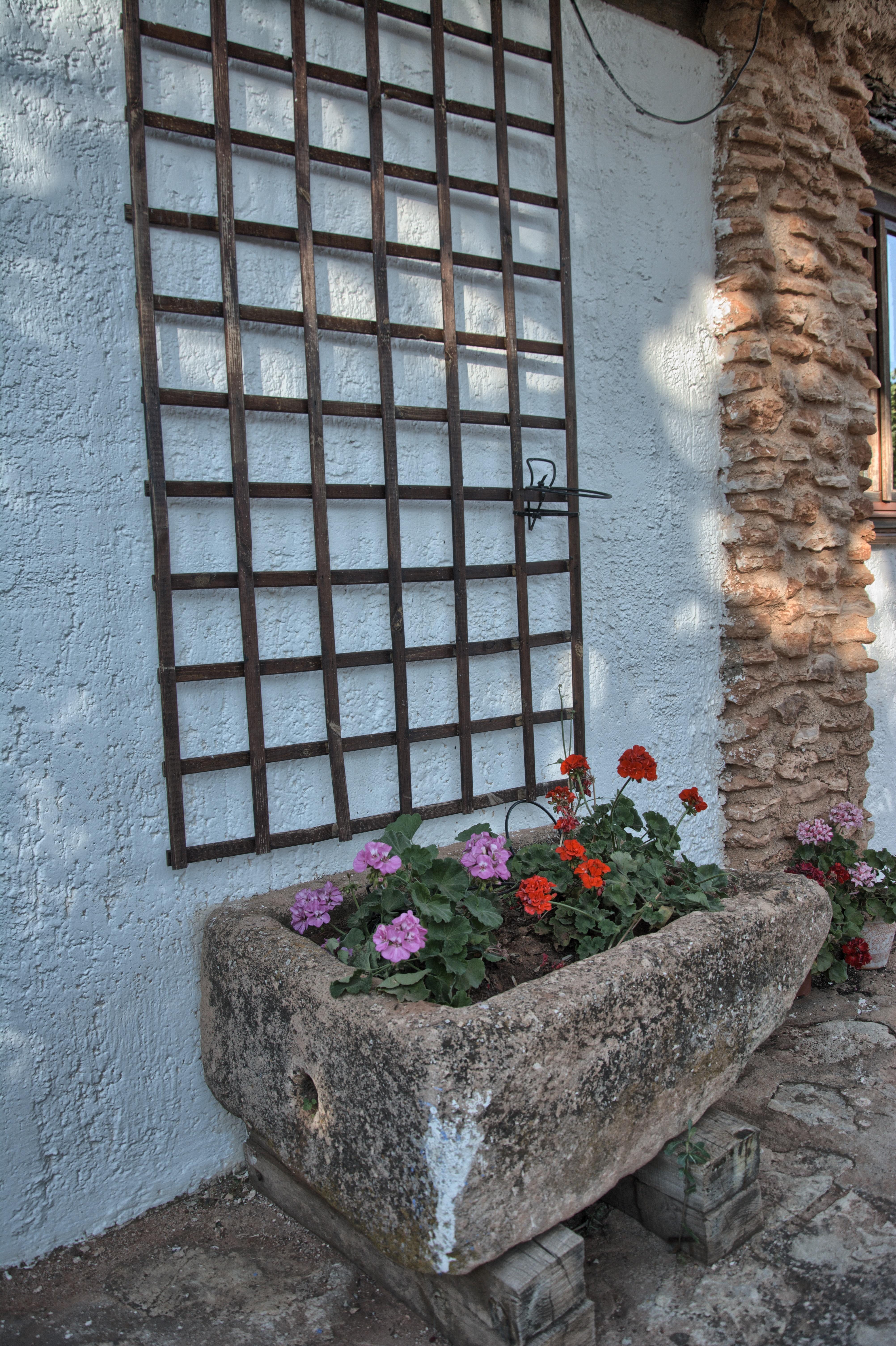 """Detalles zonas Ajardinada. Complejo Turístico Rural """"El Romeral"""""""